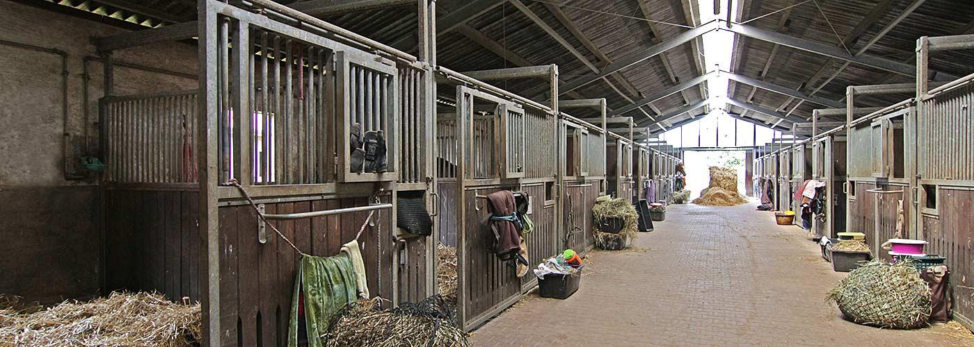 Stallanlage mit großzügigen Pferdeboxen